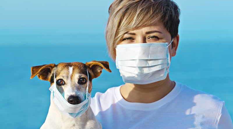 Coronavirus-e-pets-jpeg